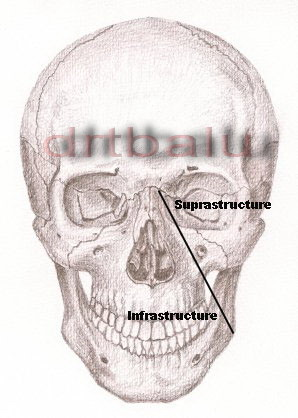 osce notes in otolaryngology pdf